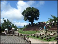DSC07216_public (ShuMao Outdoor) Tags: mountain outdoor hiking taiwan  views  2012 qingjing    nantou hehuan  hehuanshan climbling jng qng