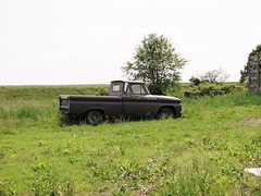 OUT TO PASTURE (richie 59) Tags: trees usa chevrolet field grass rural america truck outside us spring rust automobile gm unitedstates country rusty pickup pickuptruck faded chevy pasture rusted vehicle newyorkstate sideview oldtruck automobiles 2012 pickuptrucks nystate chevrolettrucks rustytruck wallkill generalmotors hudsonvalley chevytruck 2door motorvehicles fadedpaint oldchevytruck oldtrucks chevrolettruck c10 ulstercounty oldchevy twodoor oldpickuptruck americantruck midhudsonvalley chevyc10 chevytrucks ulstercountyny gmtrucks gmtruck rustychevy 1960struck ustruck oldrustytruck greytruck chevypickuptruck oldchevys oldpickuptrucks chevroletpickuptruck wallkillny oldchevytrucks oldrustytrucks rustychevytruck americanpickuptruck richie59 may2012 townofshawangunk greytrucks may262012 townofshawangunkny