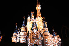 disney-magic-kingdom-castle (funmamas) Tags: disneyworld disneyanimalkingdom disneyepcot disneymagickingdom waltdisneyworldresort disneythemeparks waltdisneyworldflorida disneyhollywoodstudios livingdisneycom