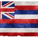 Hawaii Grunge Flag