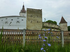 Fortified church of Harman, Romania. (UNESCO world heritage) (Frans.Sellies) Tags: world heritage church de la site unescoworldheritagesite unesco worldheritagesite list romania unescoworldheritage sites worldheritage weltkulturerbe whs roumanie humanidad patrimonio romnia roemenie worldheritagelist roumania welterbe kulturerbe romanya rumnien roemeni patrimoniodelahumanidad heritagesite unescowhs fortifiedchurch romnia patrimoinemondial werelderfgoed vrldsarv  heritagelist  werelderfgoedlijst verdensarven wolrdheritagelist     patriomoniodelahumanidad     patriomonio ph657 p1330749