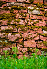 Moss likes red (mari-we) Tags: brick tower castle history monument wall sandstone ruin ruine hulk turm sandstein remains burg mauer denkmal geschichte burgruine annweiler trifels hohenberg mauerstein arenite annweileramtrifels bindersbach mygearandme hohenbergturm