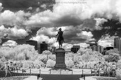 Boston Public Garden (Mike Cialowicz) Tags: city urban blackandwhite bw boston skyline ir nikon infrared daytime f28 bostoncommon bnw backbay publicgarden 1755 d90 1755mmf28 lifepixel ir830nm 830nm