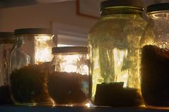 Cookie Jar Sunrise (pni) Tags: morning light sun window glass suomi finland cookie midsummer interior jar j12 pietarsaari jakobstad skrubu pni pekkanikrus