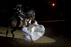 Andalusia, Spain (garrettpalm) Tags: spain seville flamenco horsedance