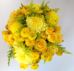 DSCN2269 (AimStudios) Tags: wedding yellow room gray yellowroses 1520 solidago craspedia yellowdahlias yellowsprayroses yellowfootballmums yellowbuttonpompons yellowgardenroses