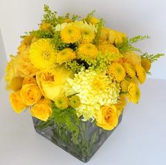 DSCN2267 (AimStudios) Tags: wedding yellow room gray yellowroses 1520 solidago craspedia yellowdahlias yellowsprayroses yellowfootballmums yellowbuttonpompons yellowgardenroses