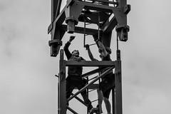 The Crane Guys I. (Adam Haranghy) Tags: camera sky white black hammer danger last digital canon eos site high workers construction crane himmel baustelle worker dslr kran bau construct gefahr bauarbeiter arbeiter hoch 60d