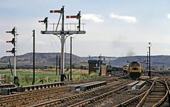 47316 Seymour Jnc & semaphores (delticfan) Tags: coaltrain class47 semaphores 47316 seymourjunction