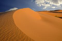 GOLDEN DESERT (SAUD ALRSHIAD) Tags: sky sahara lens golden sand nikon flickr shoot desert angle kingdom line arabic saudi arabia arabian sands riyadh saudiarabia arabi saud saudia desret kingdoom flickraward d7000 nikonflickraward thomamah nikond7000 alrshiad msawr saudarshiad saudalrshiad