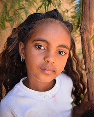 Girl in Adigrat (Rod Waddington) Tags: africa african afrika afrique adigrat ethiopia ethiopian ethnic etiopia ethnicity ethiopie etiopian thiopien tigray portrait girl female people culture cultural hairstyle face child