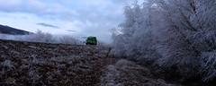 More Frost (anakiwa_forever) Tags: 1162016 tekapo lakeruataniwha hoarfrost jucycamper mackenziecountry southisland newzealand