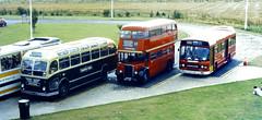 Slide 069-56 (Steve Guess) Tags: bristol avon bus rally show event england gb uk swagman norm harris ls royal blue ecw coach london transport rt leyland national mk2 red arrow
