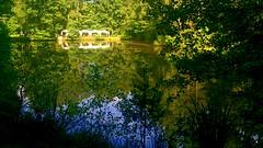 Reflexionen im Weiher (barmicity) Tags: weiher teich outdoor pflzerwald pfalz bume trees wald forest reflexion wasser