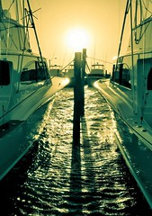 Sunset on Summer (Sky Noir) Tags: sunset boat dock water green gold yellow sun intothesun