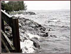 Windy day at lake (PeepeT) Tags: storm myrsky nsijrvi lake jrvi tampere finland elokuu august