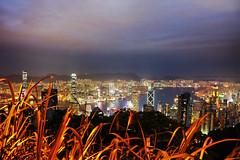 Hong Kong from the Peak (Phil Wilco) Tags: hongkong hong kong night nacht hk peak outlook aussicht urban stadt city huge big gros light licht sightseeing sehenswrdigkeiten canon 5diii panorama skyline skyscraper hochhaus hochhuser