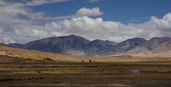 Landscape of Nyalam county, Tibet 2015 (reurinkjan) Tags: tibet  2015  janreurink tibetanplateaubtogang tibetautonomousregion tar tsang nyalamcounty armybuilding ruins historicalbuilding ruinszhigral ruinsofbuildingsgyanggog ruinkhangrelzhik menchuriver streamchurgyun himalaya himalayamtrangerigyhimalaya himalayasrigangchen tibetanlandscapepicture landscapeyulljongsynjong landscapesceneryrichuyulljongsrichuynjong landscapepictureyulljongsrimoynjongrimo naturerangbyungrangjung natureofphenomenachoskyidbyings earthandwaternaturalenvironmentsachu
