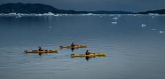 Return to Base (Frank Busch) Tags: frankbuschphotography imagebyfrankbusch photobyfrankbusch cesar glacier greenland ice john kayaking kayaks ocean southgreenland tracy wwwfrankbuschname