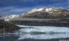Margerie Glacier - Alaska (AlaskaGM) Tags: alaska nature panoramic glacier usa margerieglacier water glacierbay sea tide blue sky sunny mountain snow fjord summer nationalpark cloud ice