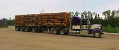 4-10's (jr-transport) Tags: kenworth w900l heavy logging custom