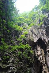 IMG_1148 (oowhatsthatdoo) Tags: kualalumpur kl nature monkey temple steps cave
