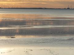 water eau wasser (achatphoenix) Tags: water waddensea wasser wattenmeer eastfrisia ems eau waterscape sunset dollart dollard dollartbay dollartbusen watt tide clouds nuages sky ciel cielo summer sun sonnenuntergang soir