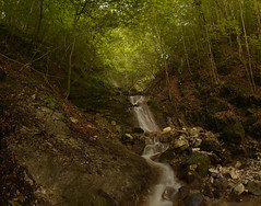 Cascade (egtobi) Tags: cascade waterfall water green forest mondsee austria outdoor salzburg upperaustria d5200 tree trees creek longexposure neutraldensityfilter polarisation borealforest