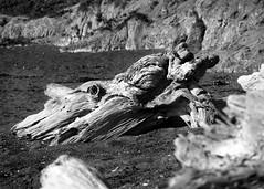 Return To MoonStone Beach (Boyce Duprey) Tags: moonstonebeach california beach moonstone cambria 2016moonstonebeach