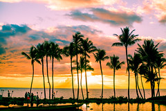 All Tomorrow's Parties (Thomas Hawk) Tags: grandwailea hawaii maui wailea waldorfastoria waldorfastoriagrandwailea beach clouds humuhumu humuhumunukunukuapuaa palmtree restaurant sunset tree fav10 fav25 fav50 fav100