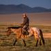 Mongol e seu melhor amigo, o cavalo