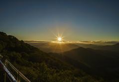 Sun rise Avenue (Alpha 2008) Tags:                japan hokkaido tomamu sunrise landscape sky blue sunstar nature mountain green vegetation observationplatform sony alpha