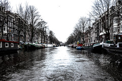 Amsterdam Canal (unluonur) Tags: amsterdam canal white water urban tree sky city europe holland day