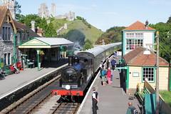 Loco 30053  |  Swanage, Dorset UK  |  2016 (keithwilde152) Tags: br m7 30053 swanage railway dorset uk 2016 corfe castle station passenger train people platforms track steam locomotives outdoor summer sun