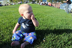 Eating from an alfajor (quinn.anya) Tags: paul baby grass alfajor cookie eating eatrealfest