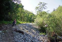 2012-04-28 Big Sur 089 Andrew Molera State Park, River Trail