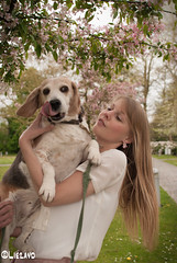 Hold still now (LiezaVD) Tags: park pink dog beagle girl spring walk