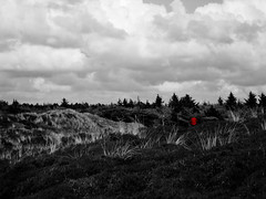 *** What you can not ... (Touareg ... absent) Tags: red white black sand dunes 4 sable pas sapin doesnot kannst ceque imaginer excist wasdu vorstellen tunepeut estinexcistent dirnicht gibtesauchnicht