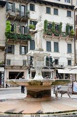 Piazza Erbe- Verona - Excellent (Steve Barowik) Tags: fountain statue buildings verona piazza fonte erbe veneto 18105mm d7000 barowik stevebarowik sbofls26