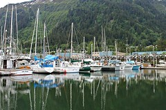 Sandra's Alaska Photographs: June 2012 -