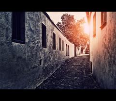 Eltville (Rheingau) (Photofreaks [Thank you for 2.000.000 views]) Tags: travel art castles tourism germany geotagged deutschland holidays bonn wine district kunst urlaub kultur culture rheintal rhine rhein unescoworldheritage tourismus stgoar koblenz rheingau ruedesheim rdesheim siegfried wein