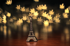 Autumn In Paris (Serena178) Tags: paris france tower leaves leaf bokeh shapes eiffel odc2