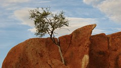 Namibia Spitzkoppe (tor-falke) Tags: africa landscape afrika landschaft namibia spitzkoppe africalandscape torfalke flickrtorfalke