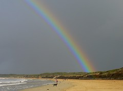 Yesterday's Rainbow (The Pocket Rocket) Tags: people beach dogs rain rainbow seagull australia victoria darkcloud oceangrove