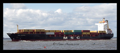 IMG_1759- MSC Jilhan (peter harris41) Tags: boats ships cargoships containership vessels rivertees redcarcleveland pdports registeredpanama mscjilhan imo8502717