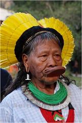 IMG_9623 Cacique Raoni Metuktire na Kari-Oca + 20 (Bettina Boehme) Tags: brazil color colour brasil riodejaneiro cores indian brazilian xingu indians indios cacique homem cor indigenas brasilian indio tribo indigenous bettina indigena penas raoni brazilianindians cocar etnia kayapó kayapo boehme bresilius indiosdobrasil karioca brasilianindians bettinaboehme caciqueraoni indiosdoxingu raonimetuktire