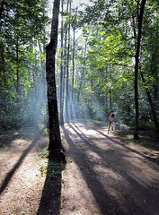 20120721_180640_ (fearnil) Tags: forest photo moscow