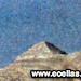 Πυραμίδα Ολύμπου -λεπτομέρεια-