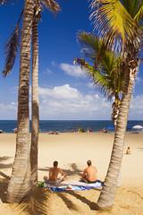 Canteras Beach (Alex Bramwell) Tags: summer vacation holiday men beach grancanaria palmtree shade canaryislands sunbathing coconutpalm laspalmas canteras
