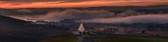 National Arboretum (Ray Jennings AU) Tags: nationalarboretum fog sunrise panorama schneider50mm nikond810 rayjennings